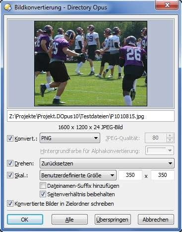 Directory Opus - Vielseitiger Dateimanager Download