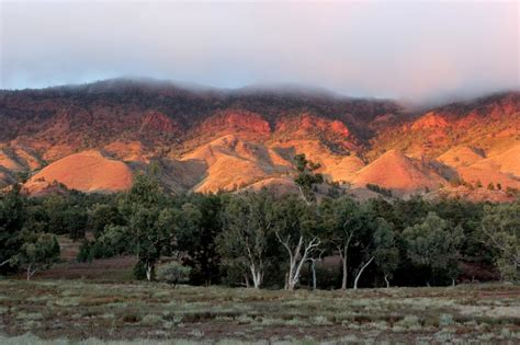 Aroona camping Flinders Ranges: review and information