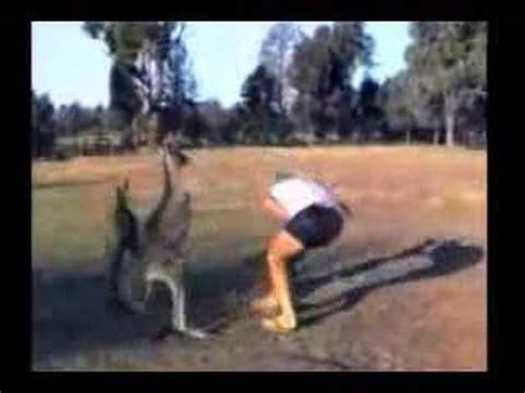 Mean animals - YouTube